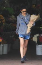 Emmanuelle Chriqui Out in Los Angeles
