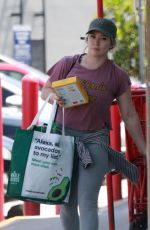 Hilary Duff Shopping at Trader Joes in Studio City