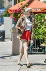 Ireland Baldwin Out on Ventura Blvd Los Angeles