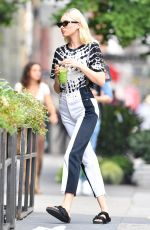 Elsa Hosk Out for lunch at il Buco in NYC