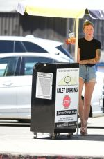 Ireland Baldwin Out in LA