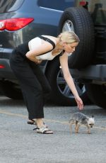 Amber Heard Shopping with her little dog in LA
