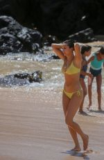 Nina Dobrev In a Bikini at the beach in Maui