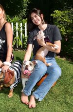 Delilah Hamlin and Amelia Hamlin spend the afternoon volunteering with the adoptable bulldogs - Beverly Hills