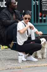Lucy Hale Spotted out with her dog Elvis this morning in New York City