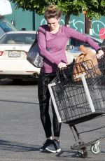 Danielle Panabaker Grocery shopping in Hollywood