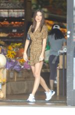 Emily Ratajkowski Shopping in LA