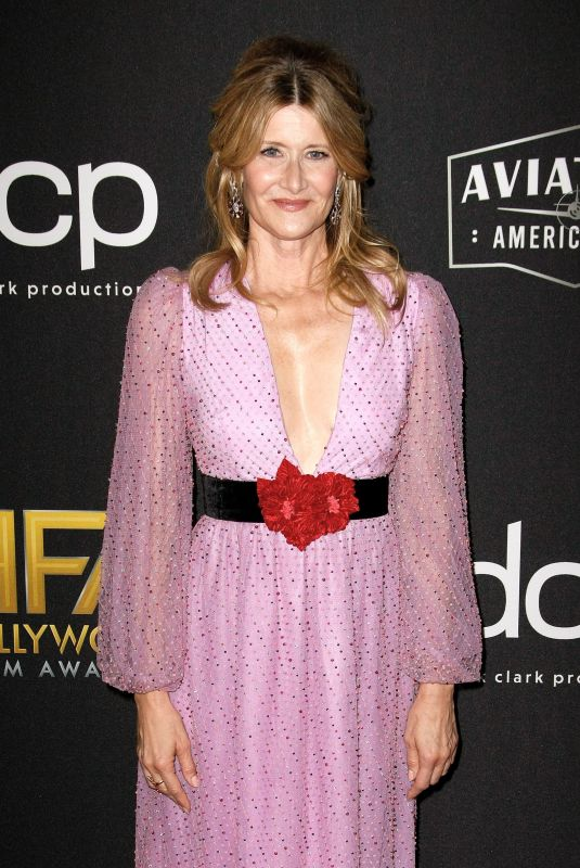 Laura Dern At 3rd Annual Hollywood Film Awards, Arrivals, Beverly Hilton, Los Angeles