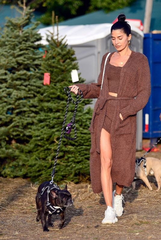 Nicole Williams and Larry English shop for Christmas trees