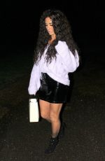Katie Price aka Jordan returns home from a shopping trip and brought a little present along the way