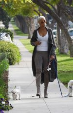 Nicole Murphy Steps Out For a Morning Walk With Her Dogs in Los Angeles