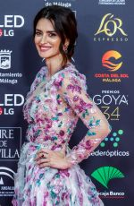 Penelope Cruz At 34th Goya Cinema Awards 2020 - Red Carpet at Jose Maria Martin Carpena Stadium in Madrid