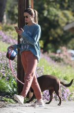 Alessandra Ambrosio Rises up early for a casual hike with her cute dog in Los Angeles