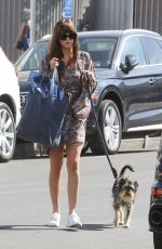 Dakota Johnson Out with her dog in LA