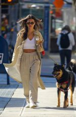 Emily Ratajkowski Out walking her dog with her husband in New York