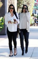 Nikki and Brie Bella grab a snack to go while out running errands on Valentine