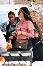 Nikki and Brie Bella shop the Farmers Market