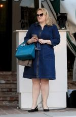 Rebel Wilson Leaving the Bungalows on San Vicente