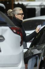 Cameron Diaz Gets parking ticket after having lunch at Honor Bar and Grill in Beverly Hills