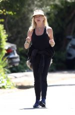 Goldie Hawn and Boston Russell Get a Walk in around the Neighborhood