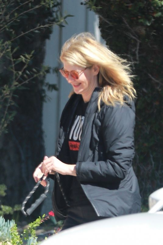 Laura Dern Takes her daughter and dogs for a walk