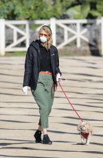 Laura Dern Wears a face mask and gloves for an early morning walk with her parents and dogs