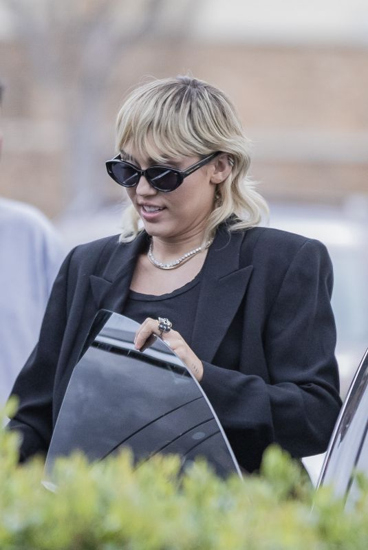 Miley Cyrus Grocery shopping in LA