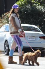 Alessandra Ambrosio Takes her dog for a walk on Easter