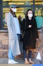 Alexandra Daddario Dons a face mask while shopping for groceries with a friend in Los Angeles