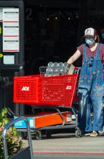 Alyson Hannigan and Alexis Denisof Shopping at Ace Hardware