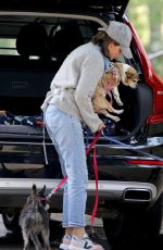 Calista Flockhart Spotted Walking Her Dogs with an Acquaintance in Los Angeles
