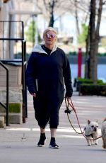 Deborra-Lee Furness Spotted walking her dogs on the empty streets on New York City