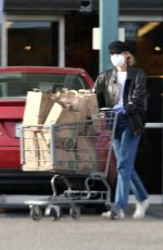 Diane Kruger Gets Groceries while Norman Reedus waits in the car