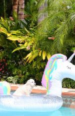 Kelly Bensimon Plays with her dog Fluffy in the pool as she keeps busy at home in West Palm Beach
