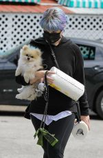 Kelly Osbourne Stops at a local store to pick up a few paper towels with her pooch in Los Angeles