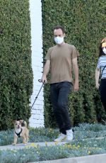 Lily Collins Takes her dog out for a walk in Beverly Hills