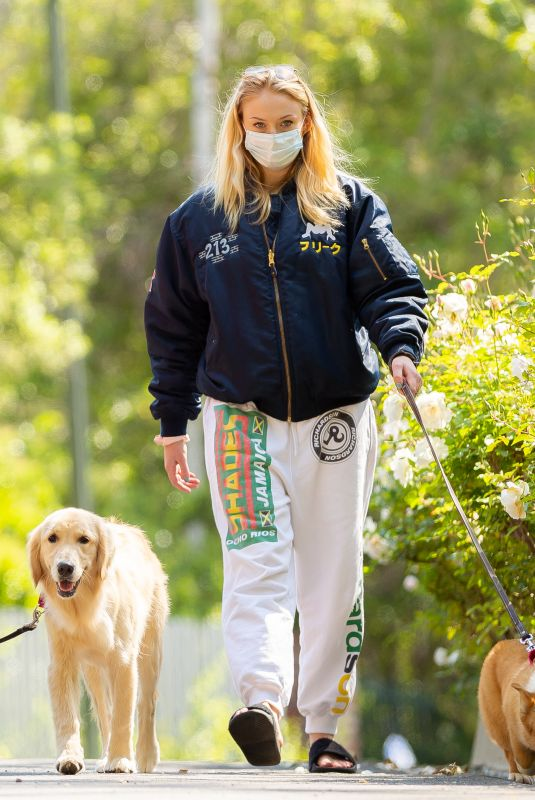 Sophie Turner Walking her dogs in Los Angeles