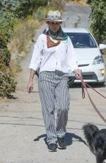 Andie MacDowell Cut a stylish figure when she was seen walking her dogs in Los Angeles