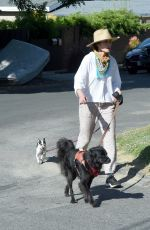 Andie MacDowell Pictured Walking Her Dogs Around Her Los Angeles Neighborhood