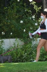 Delilah and Amelia Hamlin walking their dog in shorts and top in Beverly Hills