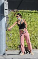 Jordana Brewster Enjoys a walk with her new puppy Endicott in Brentwood
