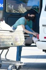 Lucy Hale Is Spotted With a Trolly Full of Groceries in Los Angeles