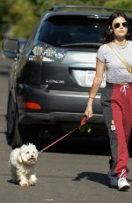 Lucy Hale Out with her dog Elvis in Studio City