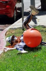 Phoebe Price Falls off her workout ball