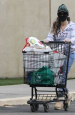 Sarah Jessica Parker Loaded up her car and disposed gloves in the garbage can after grocery shopping in New York