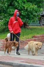Aubrey Plaza Dons red hoodie while out walking her dogs in Los Feliz