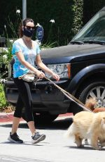 Aubrey Plaza Walking her dogs in Los Feliz