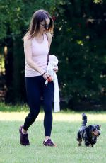 Emilia Clarke Out in a park playing with her dog in London