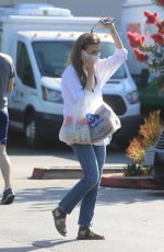 Lily Collins Shopping some food supplies in Los Angeles