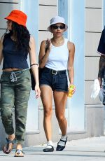 Zoe Kravitz Out with a group of friends in New York City